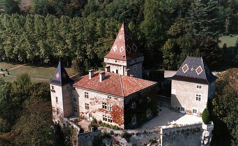Photo du Monument Historique Château de la Sône situé à La Sône
