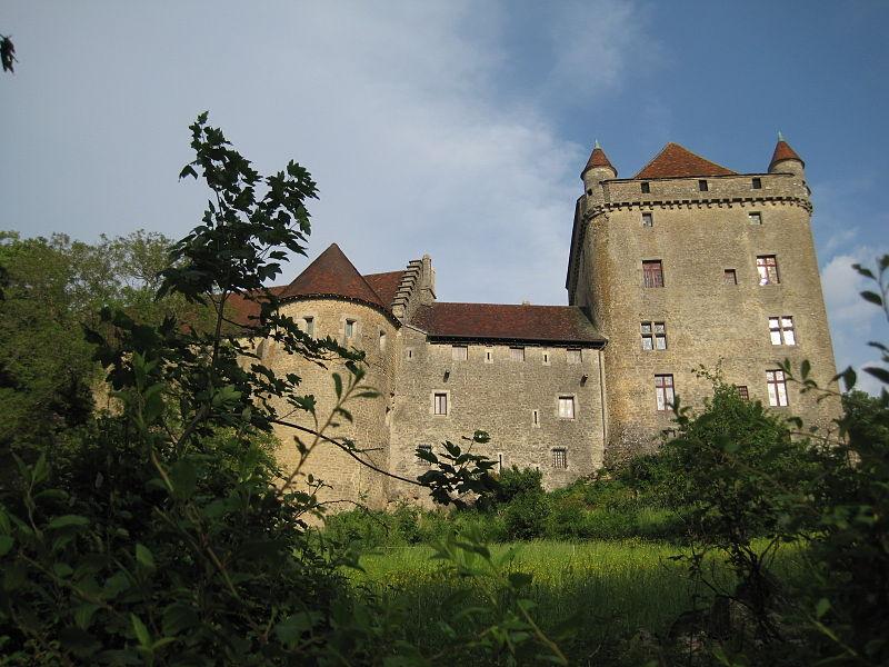 Photo du Monument Historique Château du Pin situé à Le Pin