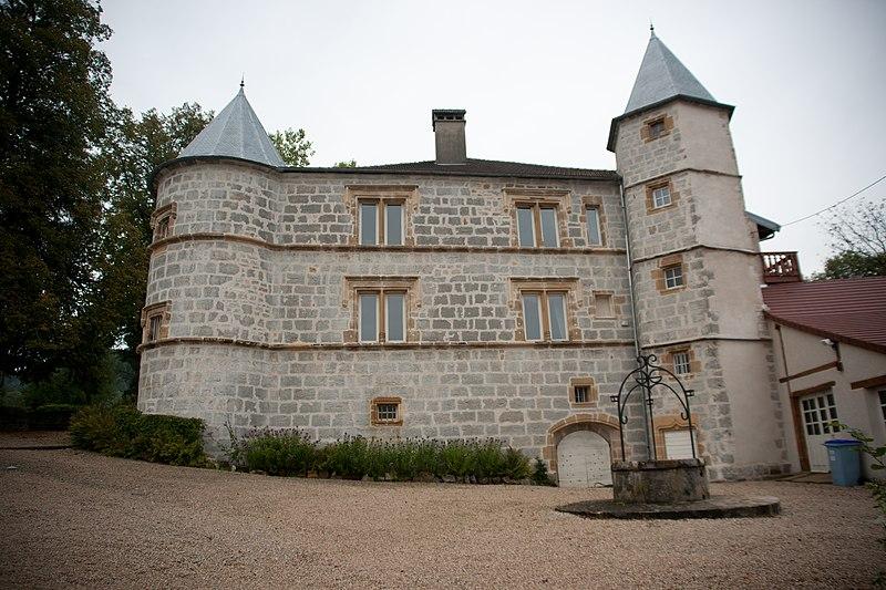 Photo du Monument Historique Château situé à Sirod