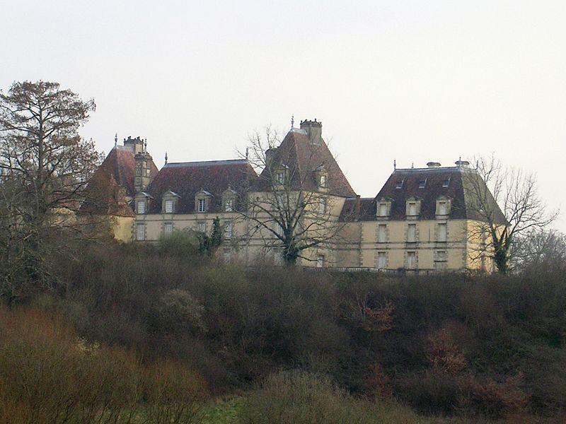 Photo du Monument Historique Château de Castillon situé à Arengosse