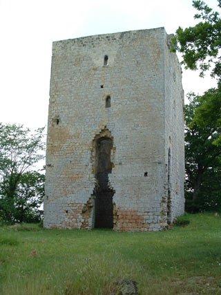 Photo du Monument Historique Château de Poyaller situé à Saint-Aubin