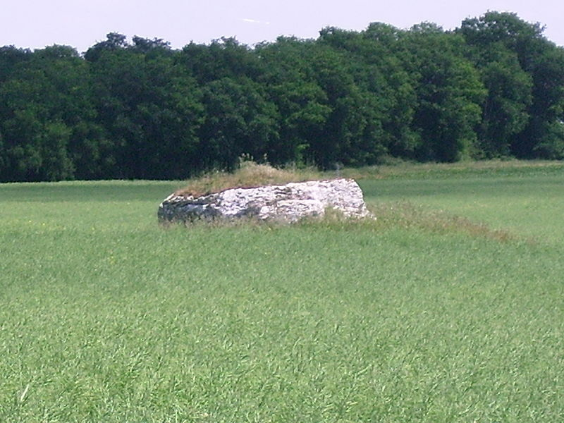 Photo du Monument Historique Dolmen de la Mouïse-Martin situé à Tripleville