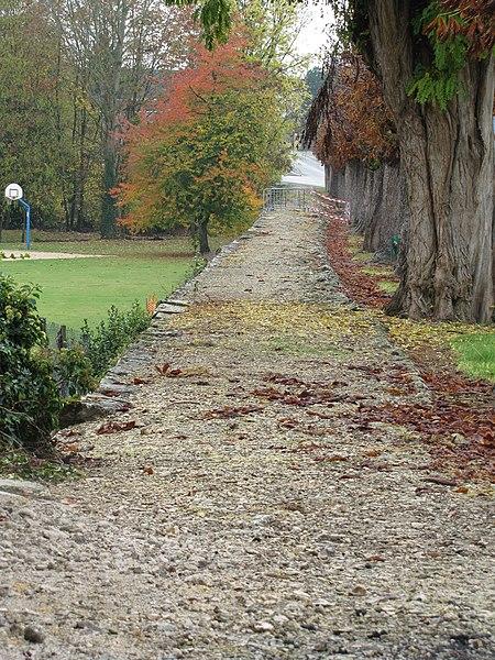 Photo du Monument Historique Voie gallo-romaine dite voie de Jules César ou chemin de Chartres (également sur communes de Sémerville, Membrolles et La Colombe) situé à Verdes