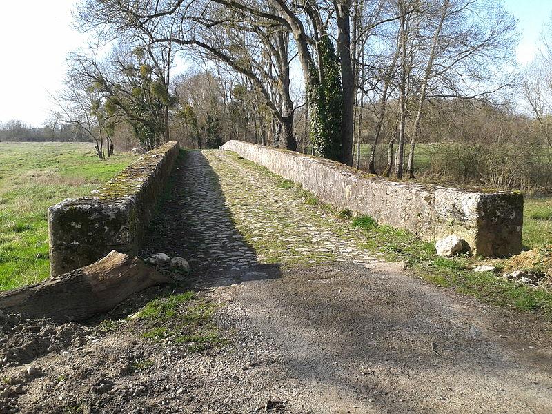 Photo du Monument Historique Pont Saint-Michel et ponts sur le Cosson dits chastrés ou chartrains (également sur communes de Saint-Gervais-la-Forêt et Vineuil) situé à Blois