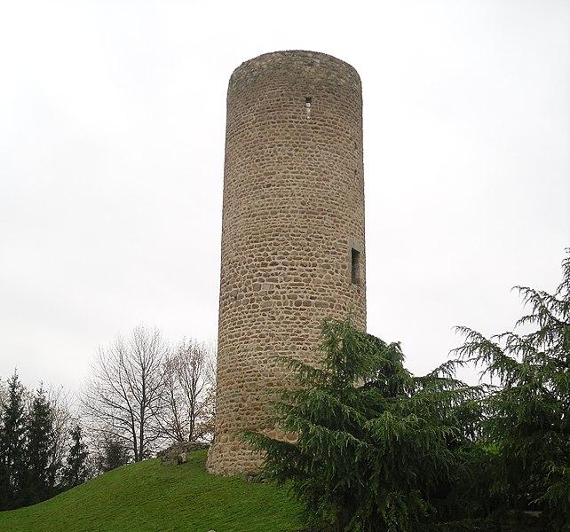 Photo du Monument Historique Château des Comtes de Forez (restes de l'ancien) situé à Cleppé