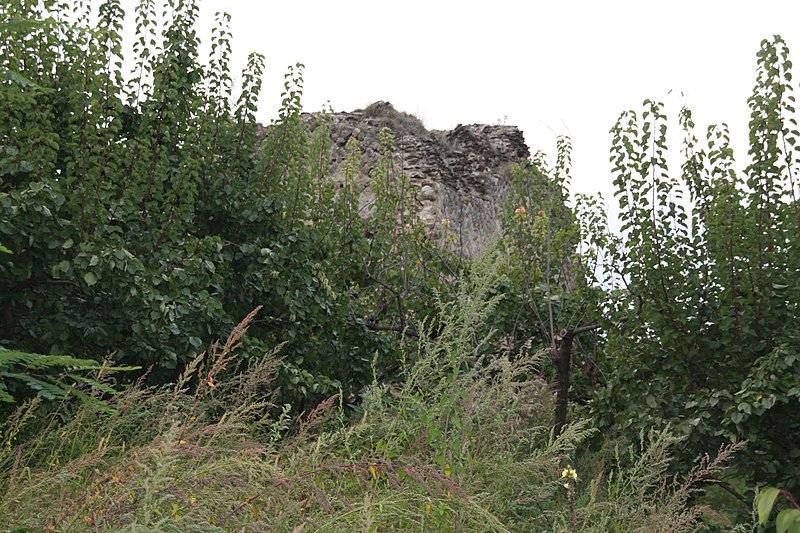 Photo du Monument Historique Aqueduc romain situé à Genilac