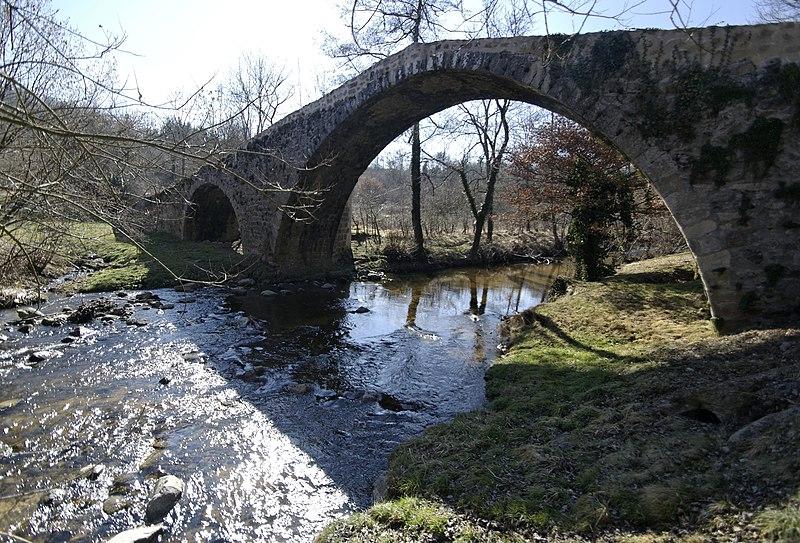 Photo du Monument Historique Pont du Diable à Vérine situé à Saint-Marcellin-en-Forez