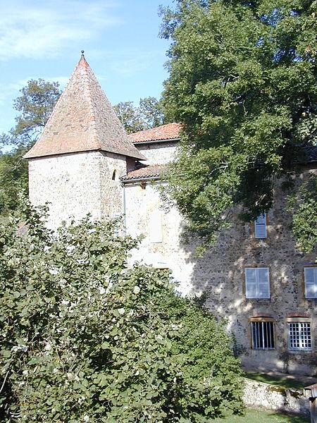 Photo du Monument Historique Château de Sarron situé à Fourneaux