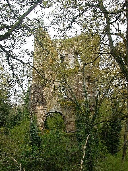 Photo du Monument Historique Château Saint-Clair situé à Derval