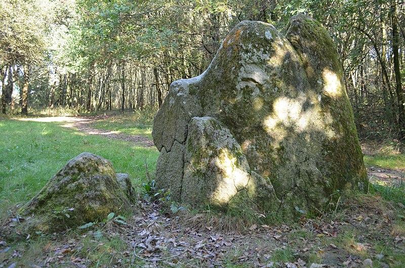 Photo du Monument Historique Menhirs (deux) situé à Pont-Saint-Martin