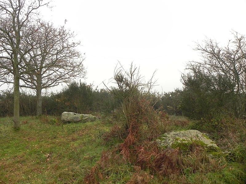 Photo du Monument Historique Dolmen dit de la Briordais situé à Saint-Brevin-les-Pins