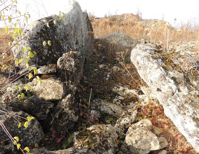 Photo du Monument Historique Dolmen de Mailleton situé à Malesherbes