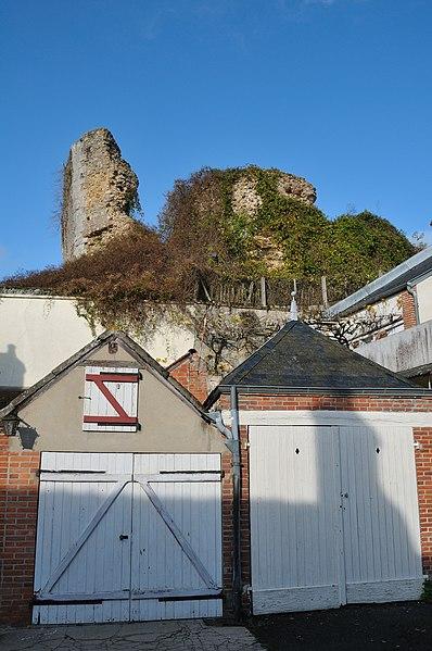 Photo du Monument Historique Ruines du donjon de la Motte situé à Saint-Gondon