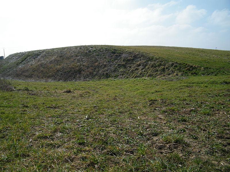 Photo du Monument Historique Motte médiévale de Nids situé à Tournoisis