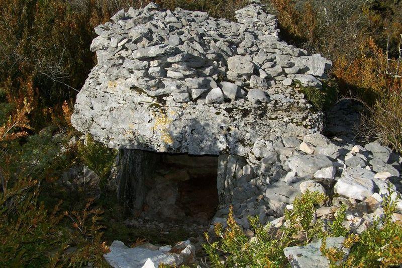 Photo du Monument Historique Dolmen du Mas de Labat situé à Cénevières
