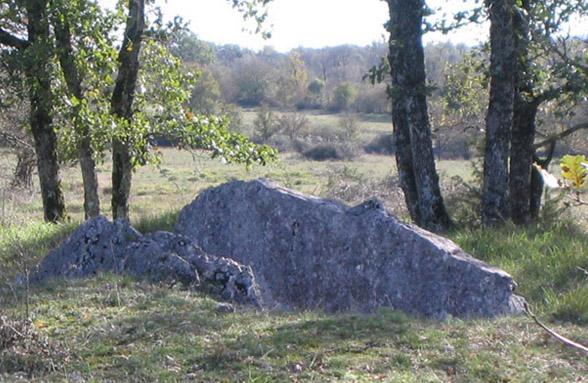 Photo du Monument Historique Dolmen des Plassous ou Las Aspes situé à Gramat