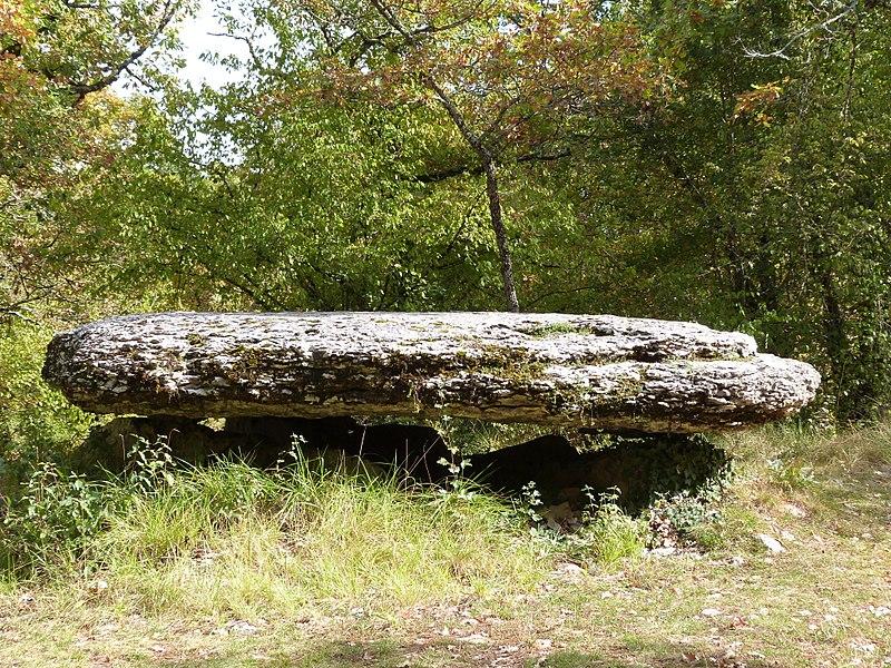 Photo du Monument Historique Dolmen situé à Laramière