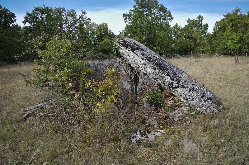 Photo du Monument Historique Dolmen de Dirau situé à Saillac