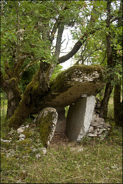 Photo du Monument Historique Dolmen des Agars situé à Saint-Chels