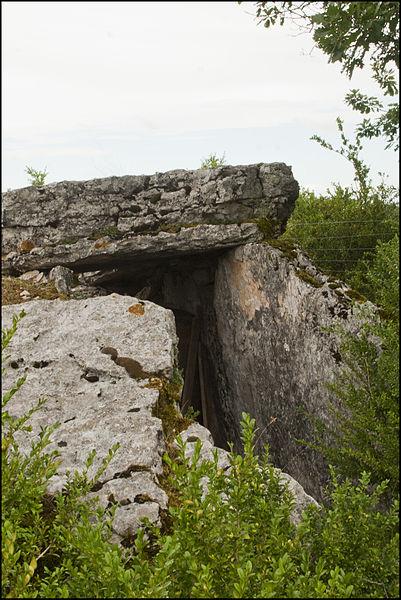 Photo du Monument Historique Dolmen du Mas de Pezet situé à Saint-Chels
