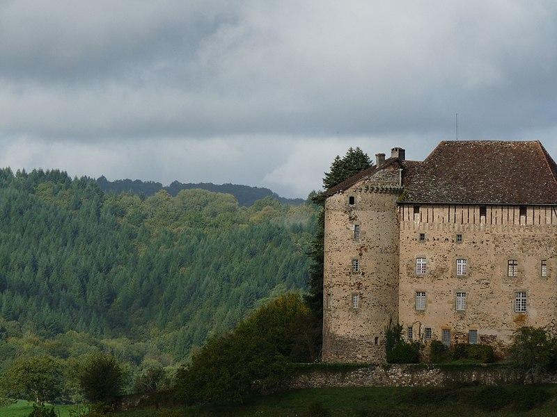 Photo du Monument Historique Château de Puy-Launay situé à Linac