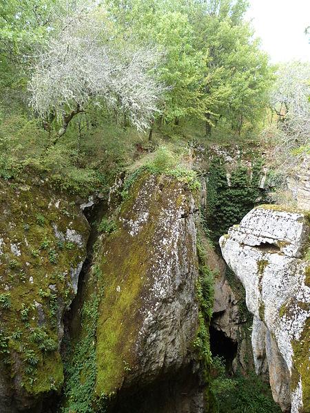Photo du Monument Historique Site archéologique de la phosphatière du Cloup d'Aural situé à Bach