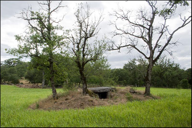 Photo du Monument Historique Site archéologique du dolmen du Rat situé à Saint-Sulpice