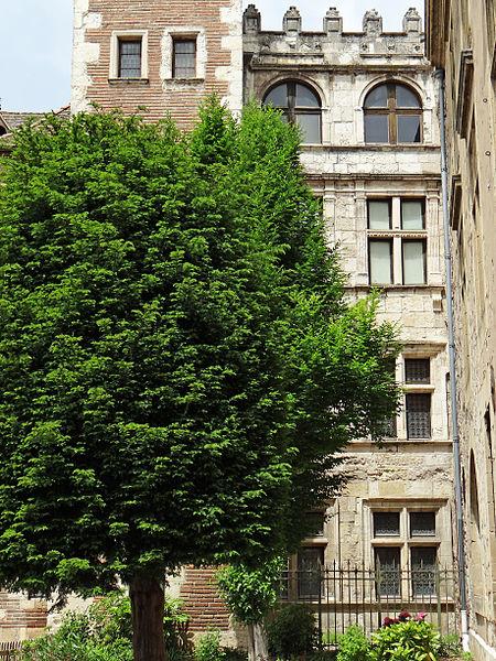 Photo du Monument Historique Hôtels de Vaurs et d'Estrades situé à Agen