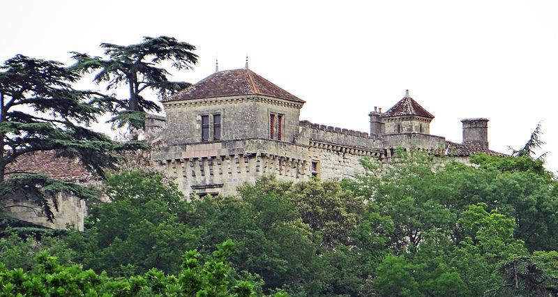 Photo du Monument Historique Château de Castelnoubel situé à Bon-Encontre