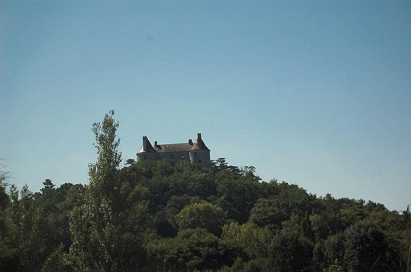Photo du Monument Historique Château et sa chapelle Notre-Dame situé à Buzet-sur-Baïse