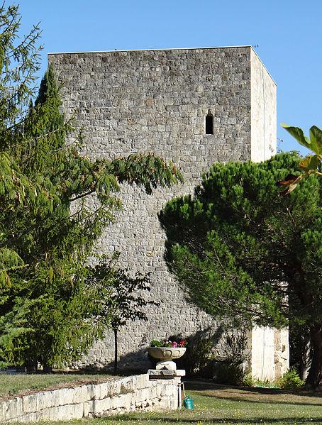 Photo du Monument Historique Ruines du donjon de Faugerolles situé à La Croix-Blanche