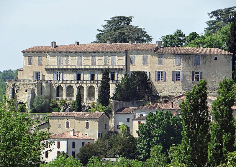 Photo du Monument Historique Château situé à Poudenas