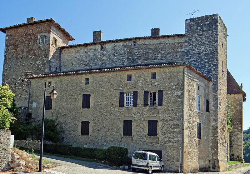 Photo du Monument Historique Château de Lustrac situé à Trentels