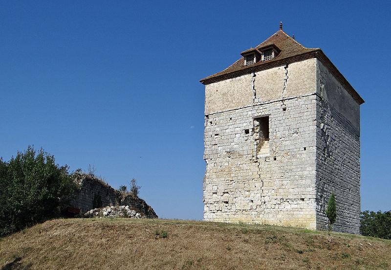 Photo du Monument Historique Château de Roquefort situé à Roquefort