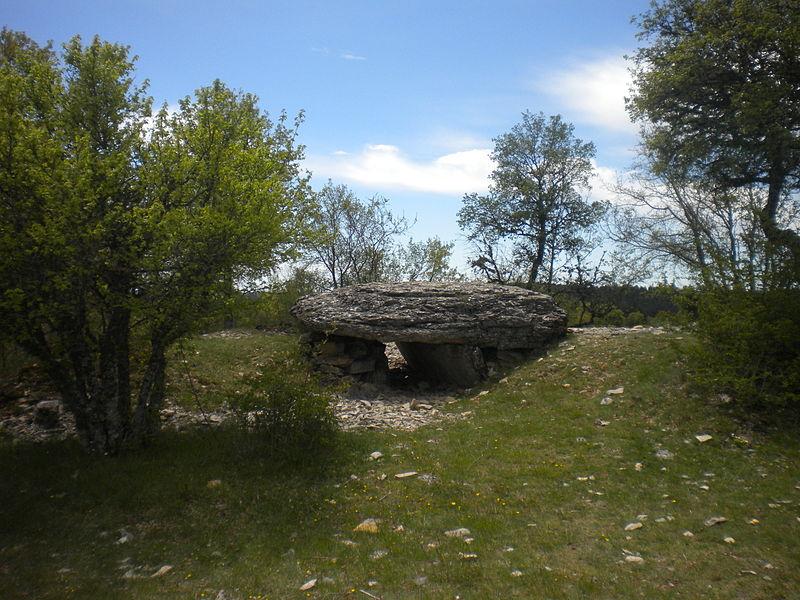 Photo du Monument Historique Dolmen de Chamgefège situé à Balsièges