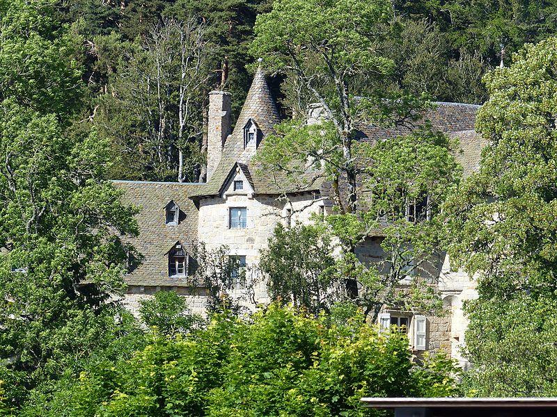 Photo du Monument Historique Château situé à Fournels