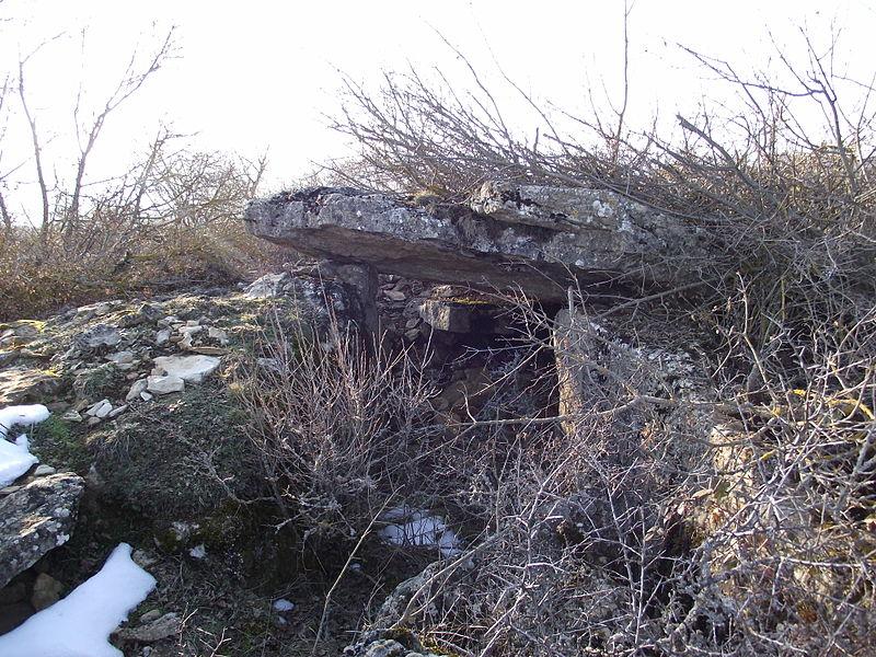 Photo du Monument Historique Site mégalithique du plateau de Poujoulet (également sur commune de Marvejols) situé à Montrodat