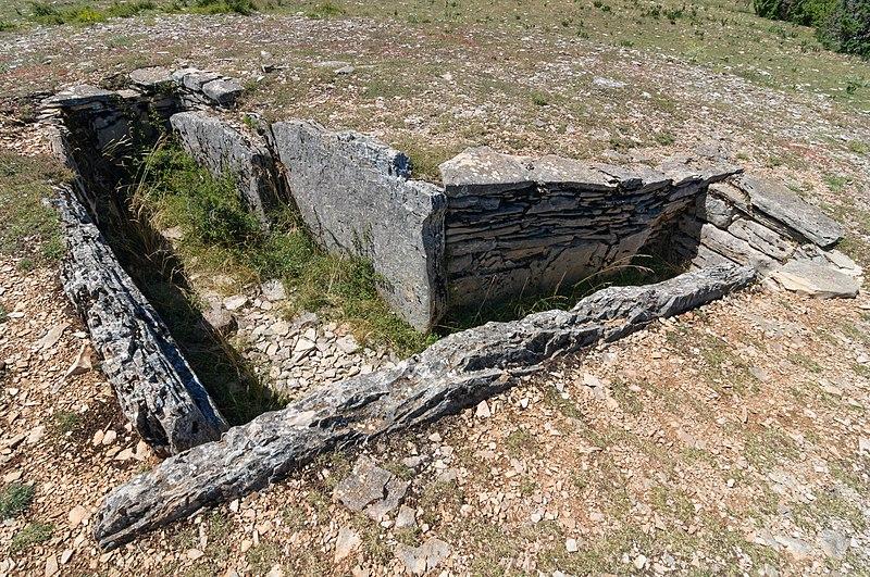 Photo du Monument Historique Ensemble mégalithique de l'Aire des Trois-Seigneurs (également sur commune de Laval-du-Tarn) situé à Sainte-Enimie