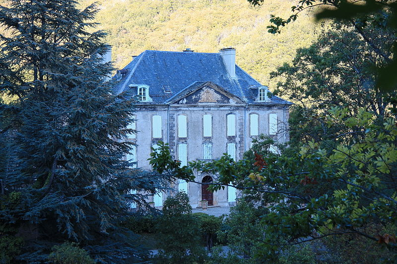 Photo du Monument Historique Château de Salgas situé à Vebron