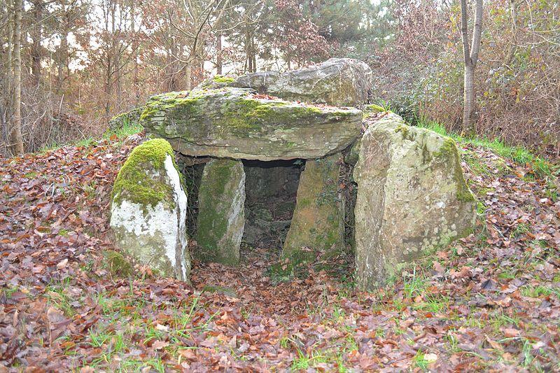 Photo du Monument Historique Dolmen situé à Champtocé-sur-Loire