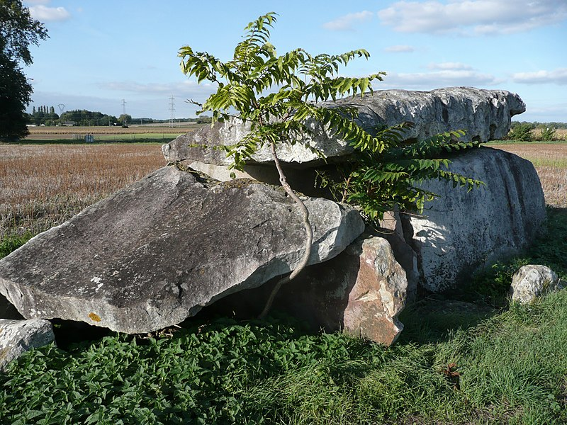 Photo du Monument Historique Dolmen situé à Charcé-Saint-Ellier-sur-Aubance
