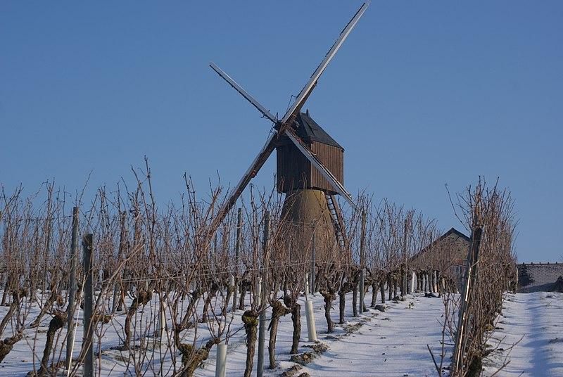 Photo du Monument Historique Moulin à vent de la Pinsonnerie situé à Faye-d'Anjou