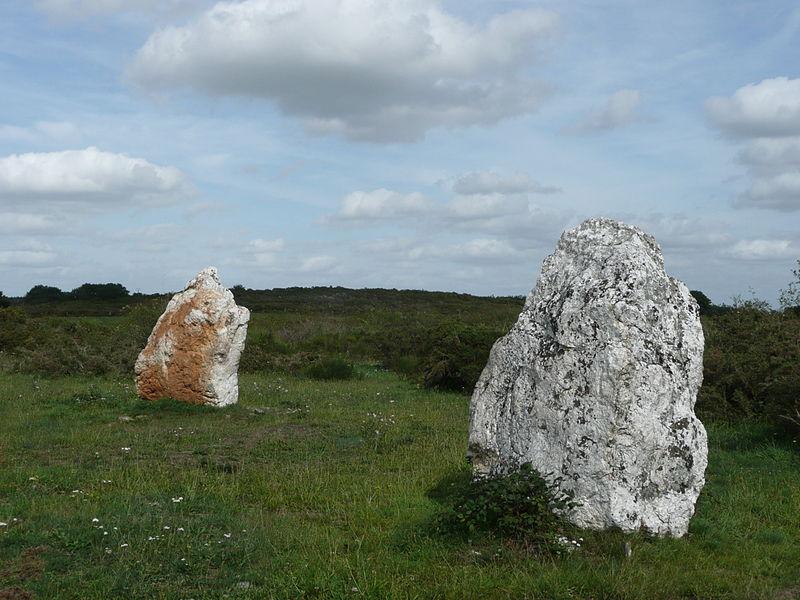Photo du Monument Historique Ensemble mégalithique situé à Freigné