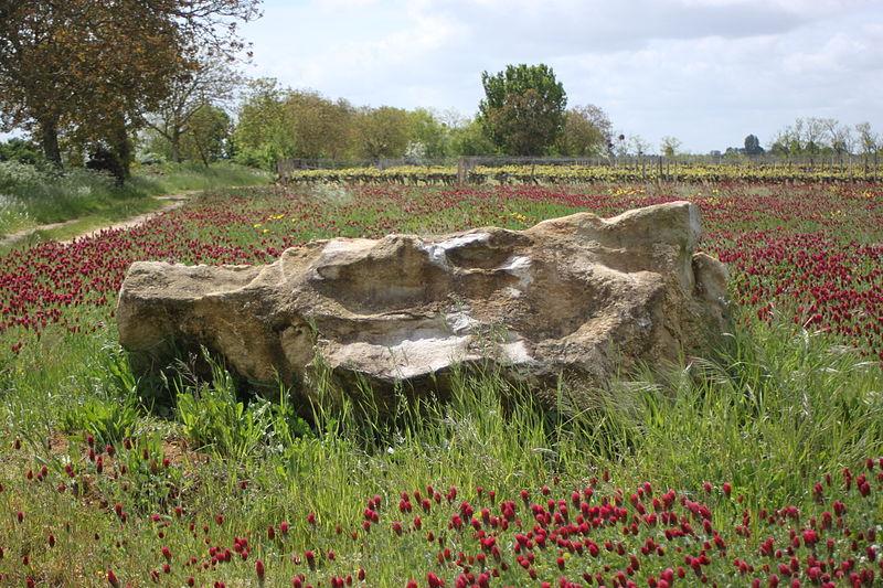Photo du Monument Historique Polissoir situé à Martigné-Briand