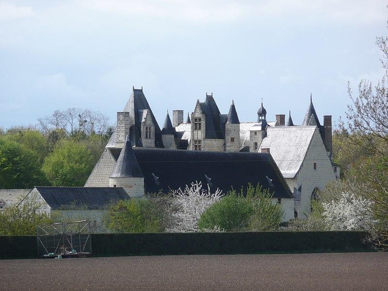 Photo du Monument Historique Château de Boumois situé à Saint-Martin-de-la-Place