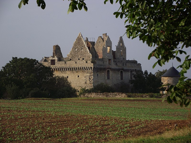 Photo du Monument Historique Château du Grand-Riou situé à Tigné