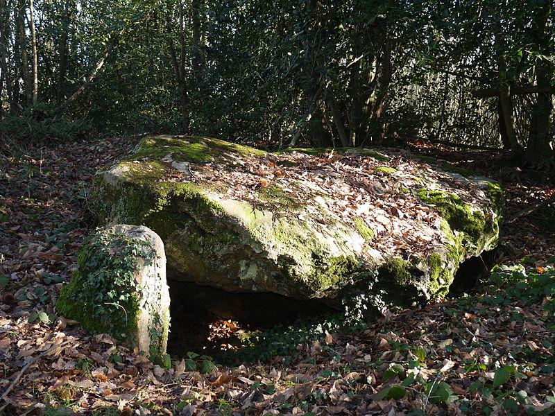 Photo du Monument Historique Dolmen de la Petifaie situé à La Ferrière-de-Flée