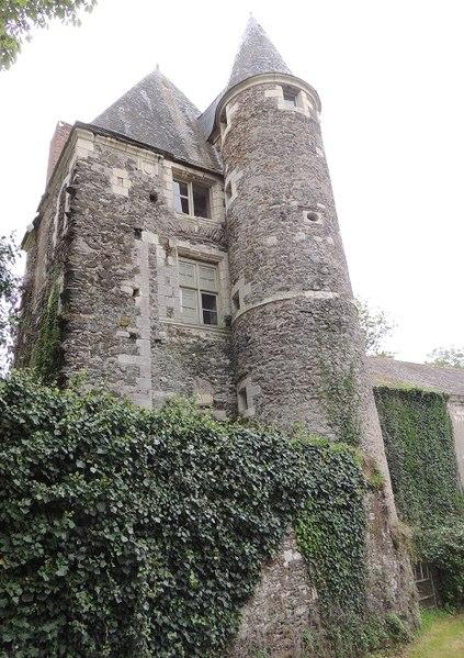 Photo du Monument Historique Château de Mantelon situé à Denée