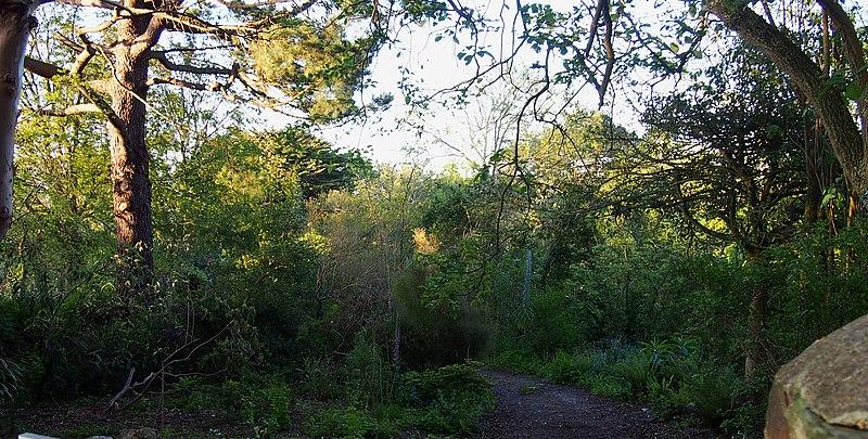 Photo du Monument Historique Jardin botanique de la Roche Fauconnière situé à Cherbourg