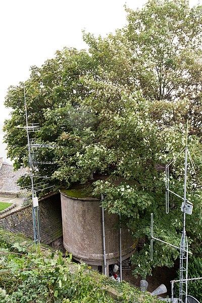 Photo du Monument Historique Deux réservoirs d'eau situé à Le Mont-Saint-Michel